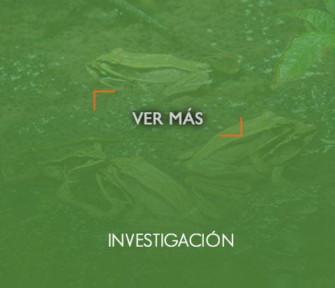 _investigacionOn
