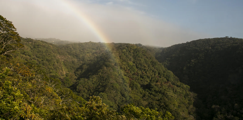 Rainbow over Bajo del Tigre Reserve, Monteverde. Photo: Orlando Calvo