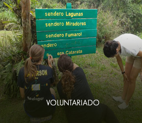 _voluntariadoOff