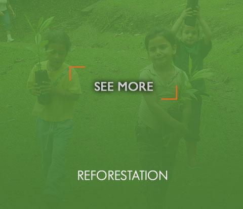 reforestacionOn