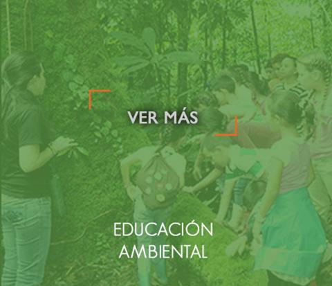 _educacionAmbientalOn