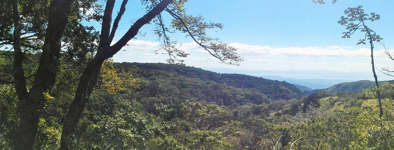 View of Bajo del Tigre Reserve, Monteverde