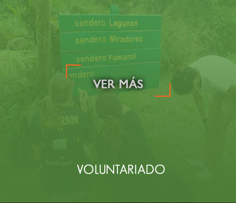 _voluntariadoOn